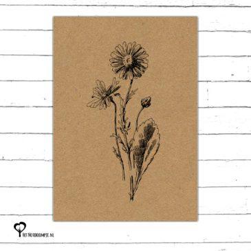 Het Noteboompje kaart kaartje A6 zwart wit zwartwit zwart-wit zwart/wit woonkaart kraft botanical