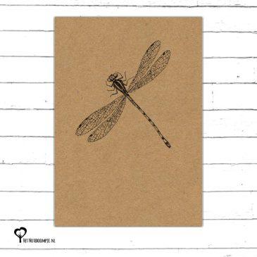 Het Noteboompje kaart kaartje A6 zwart wit zwartwit zwart-wit zwart/wit woonkaart kraft insect libelle