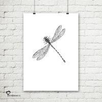 Het Noteboompje poster zwart wit zwartwit zwart-wit zwart/wit insecten insect libelle pentekening schets