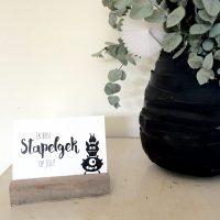 fotolijst steigerhout liggend kaarthouder fotohouder fotolijstje