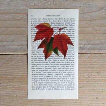herfstbladeren herfst blad bladeren print franse frans vintage oud pagina bladzijde poster Het Noteboompje