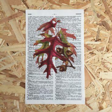 eikenblad eik eikel eikels herfst print franse frans vintage oud pagina bladzijde poster Het Noteboompje
