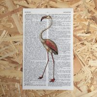flamingo print franse frans vintage oud pagina bladzijde poster Het Noteboompje