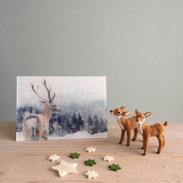 hert op plexiglas print op plexiglas foto op glas acrylprint glasprint plexiglasprint winter kerst deer kerstmis christmas x-mas xmas het noteboompje