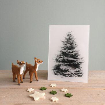 kerstboom op plexiglas print op plexiglas foto op glas acrylprint glasprint plexiglasprint winter kerst kerstmis christmas x-mas xmas het noteboompje