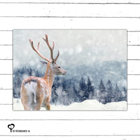 Het Noteboompje kerstkaart christmas christmascard x-mas xmas card spar kerstboom denneboom christmastree tree xmastree sneeuw snow winter kerst boom hert ree deer moose