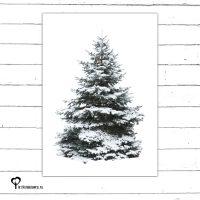 Het Noteboompje kerstkaart christmas christmascard x-mas xmas card spar kerstboom denneboom christmastree tree xmastree sneeuw winter kerst boom