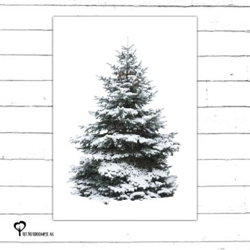 Het Noteboompje kerstkaart christmas christmascard x-mas xmas card spar kerstboom denneboom christmastree tree xmastree sneeuw winter kerst boom