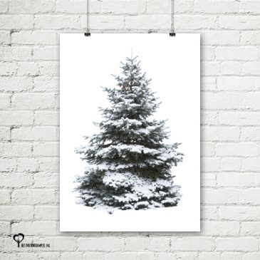 Het Noteboompje poster kerstposter christmas x-mas xmas card spar kerstboom denneboom christmastree tree xmastree sneeuw winter kerst boom kunstkerstboom