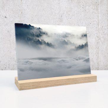 misty forest mistig bos bossen op plexiglas print op plexiglas foto op glas print op acrylaat acrylaatprint, foto op acryl acrylfoto foto op glas, glasfoto foto op plexiglas foto op kunststof foto op plastic acrylprint glasprint plexiglasprinthet noteboompje