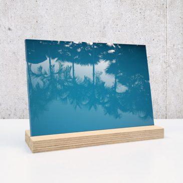 palm palmen op plexiglas print op plexiglas foto op glas print op acrylaat acrylaatprint, foto op acryl acrylfoto foto op glas, glasfoto foto op plexiglas foto op kunststof foto op plastic acrylprint glasprint plexiglasprinthet noteboompje