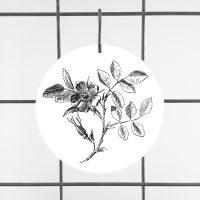wilde roos botanical botanicals plant natuur op plexiglas print op plexiglas foto op glas print op acrylaat acrylaatprint, foto op acryl acrylfoto foto op glas, glasfoto foto op plexiglas foto op kunststof foto op plastic acrylprint glasprint plexiglasprinthet noteboompje