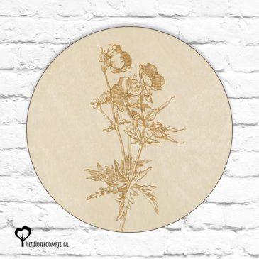 geranium geraniums bloem bloempje bloemetje plant planten botanical het noteboompje muurcirkel muurcirkels wandcirkel wandcirkels tuincirkel tuincirkels muur wand cirkel rond rondje afbeelding schilderij
