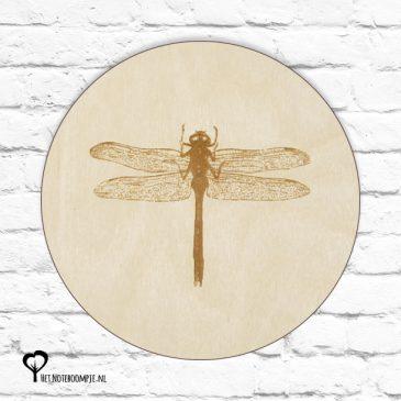 libelle libelles waterjuffer waterjuffertje insect botanical het noteboompje muurcirkel muurcirkels wandcirkel wandcirkels tuincirkel tuincirkels muur wand cirkel rond rondje afbeelding schilderij