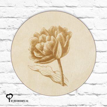 tulp tulpen bloem bloempje bloemetje plant planten botanical het noteboompje muurcirkel muurcirkels wandcirkel wandcirkels tuincirkel tuincirkels muur wand cirkel rond rondje afbeelding schilderij