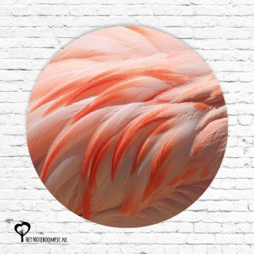 het noteboompje muurcirkel muurcirkels wandcirkel wandcirkels tuincirkel tuincirkels muur wand cirkel rond rondje afbeelding schilderij schutting poster tuin flamingo zalmroze flamingos roze zalmroze veren flamingoveren