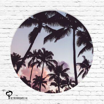 het noteboompje muurcirkel muurcirkels wandcirkel wandcirkels tuincirkel tuincirkels muur wand cirkel rond rondje afbeelding schilderij schutting poster tuin roze wolken lucht hemel strand zonsondergang palmbomen