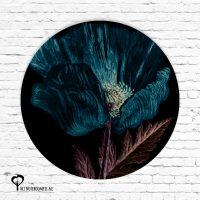 roos klaproos klaprozen bloem bloemen donker zwart flora het noteboompje muurcirkel muurcirkels wandcirkel wandcirkels tuincirkel tuincirkels muur wand cirkel rond rondje afbeelding schilderij schutting poster tuin