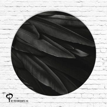 muurcirkel muurcirkels wandcirkel wandcirkels tuincirkel tuincirkels muur wand cirkel rond rondje afbeelding schilderij schutting poster tuin monochrome monochroom zwart wit zwartwit zwart-wit veren vogel veren veer vogelveren zwarte het noteboompje