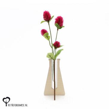 erlenmeyer vaasje mini vaas cadeau kado kadootje reageerbuis reageerbuisje bloem bloemetje hout houten berken het noteboompje